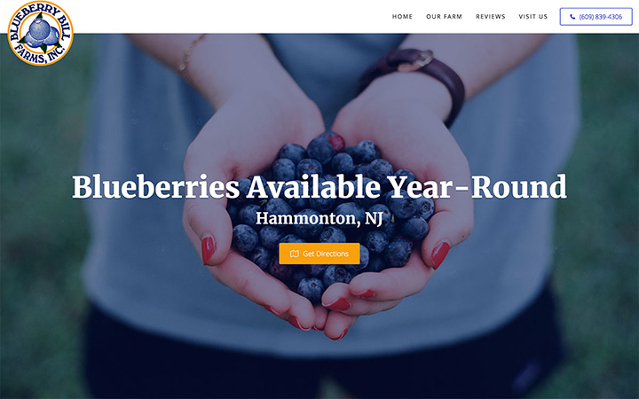 Blueberry Bill Farms Website Design
