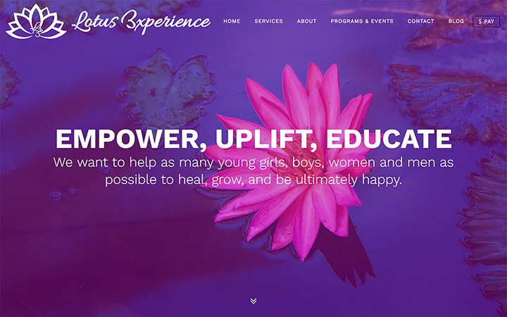 Lotus Experience Website Design